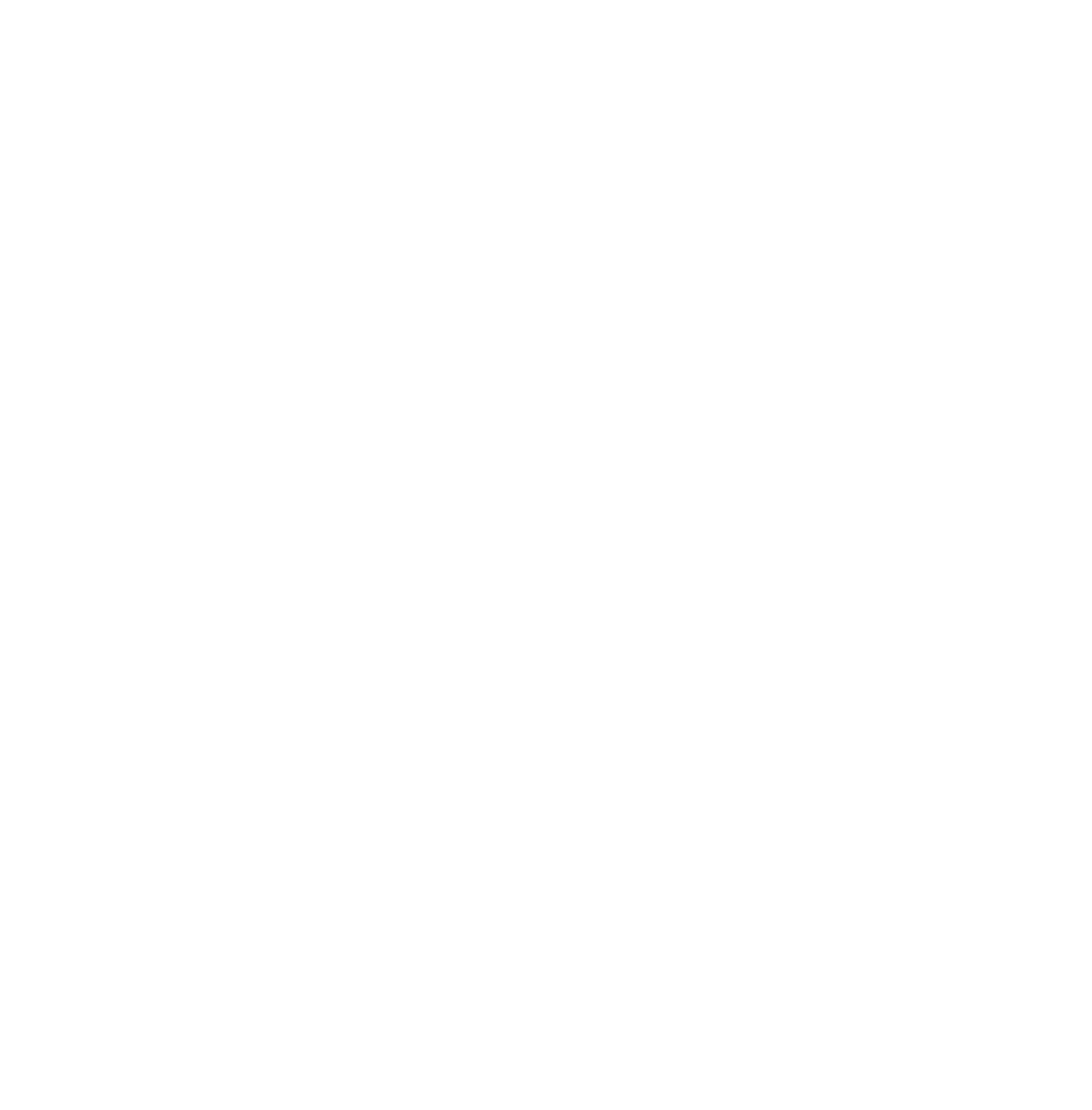 Львівська Модель ООН Logo